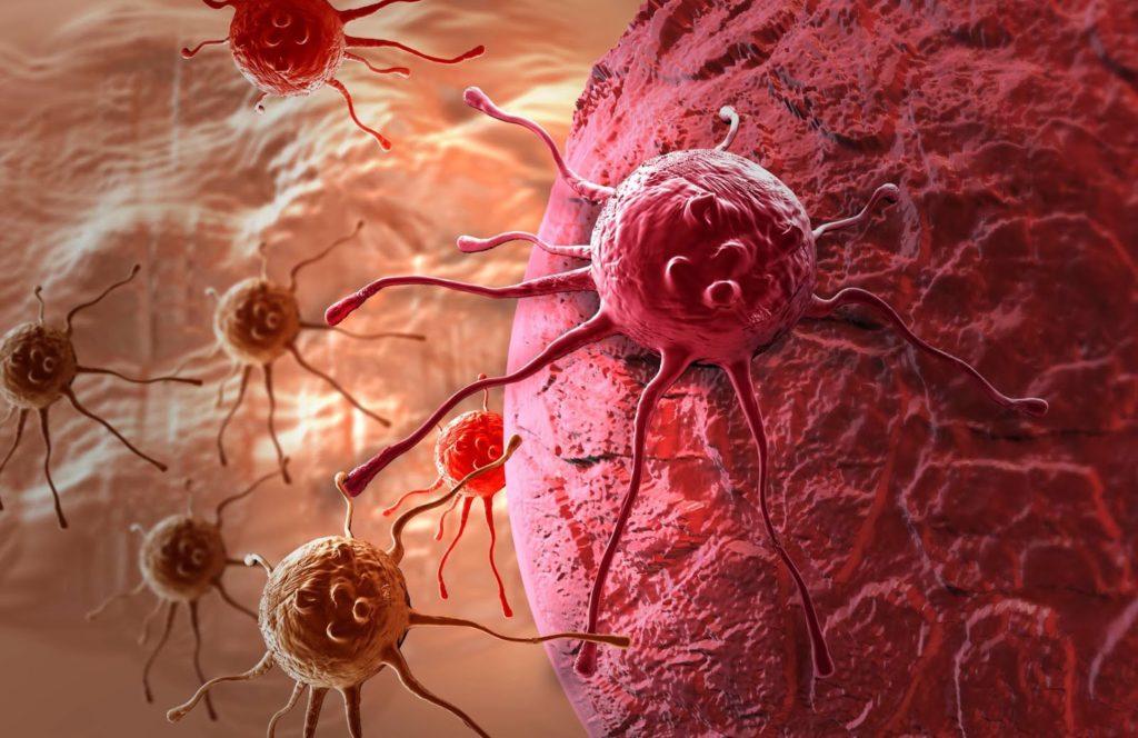 Вирус В-клеточной лимфомы