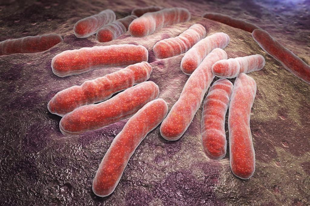 Туберкулез при воспаленных лимфоузлах