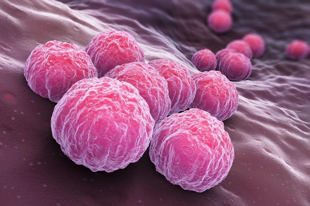 Вирус паразита хламидии при лимфаденопатии печени
