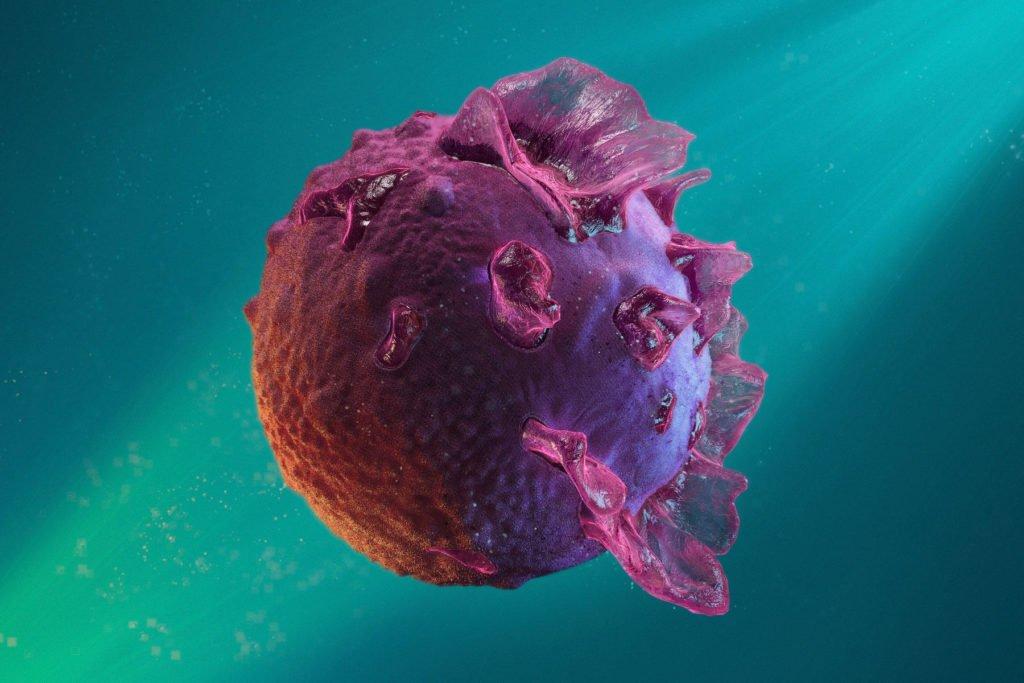 Вирус Эпштейна-Барр под микроскопом
