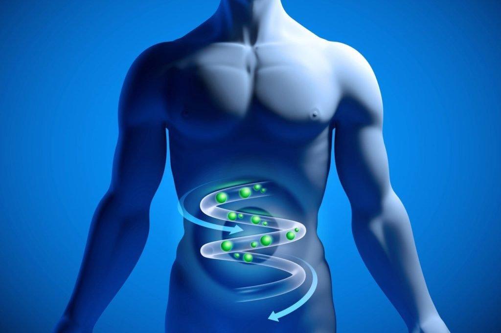 Лимфаденопатия брюшной полости: что это такое, как проявляется, виды и причины, диагностика и лечение