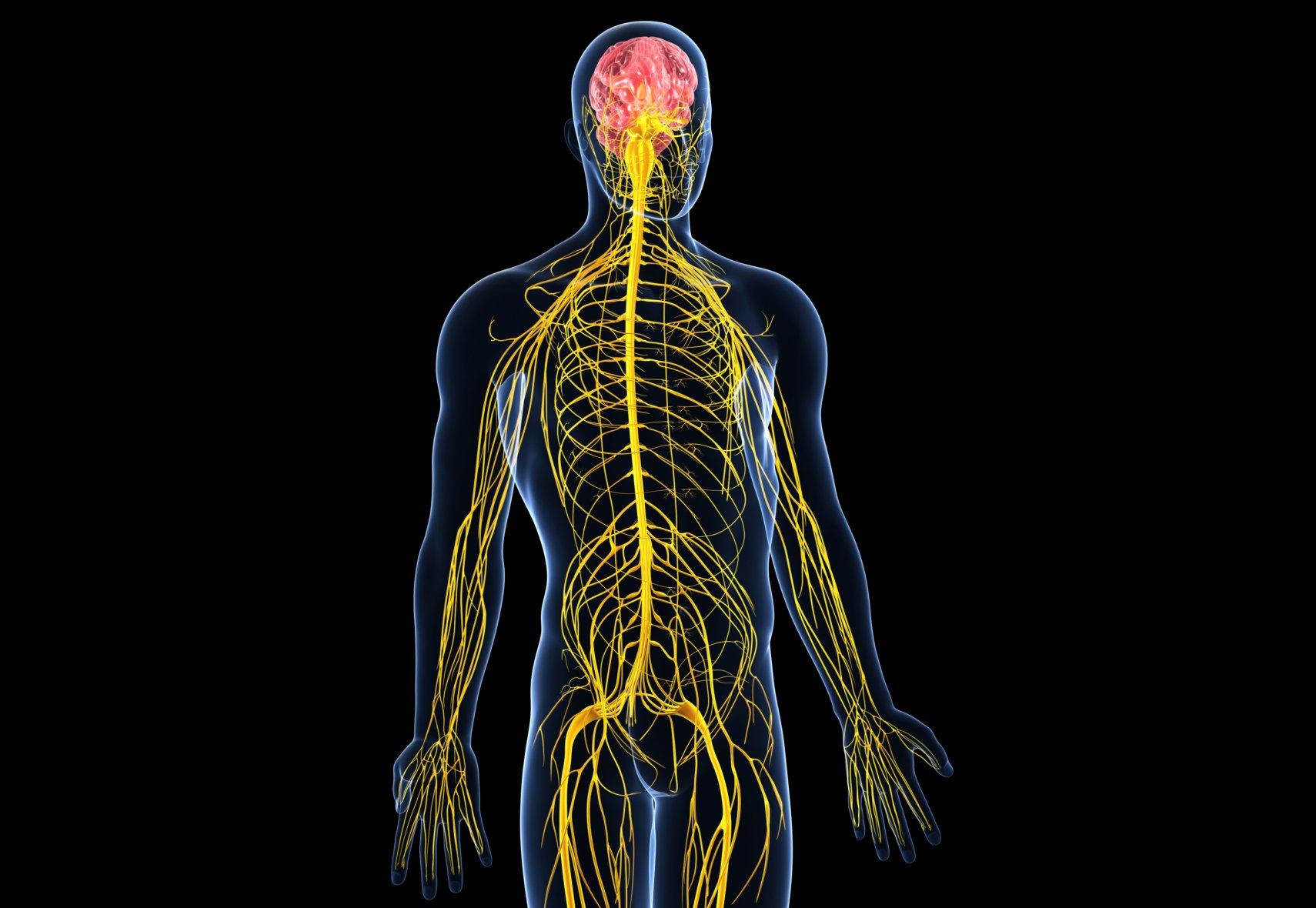 Застой лимфы в ногах: лечение, профилактика и симптомы