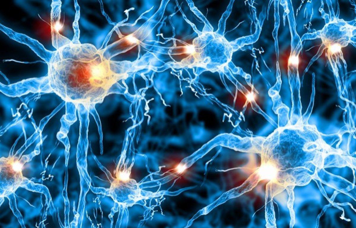 Что представляет собой заболевание Лимфома головного мозга