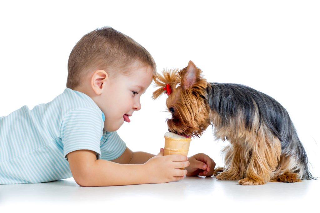 Причины возникновения кисты селезенки у детей
