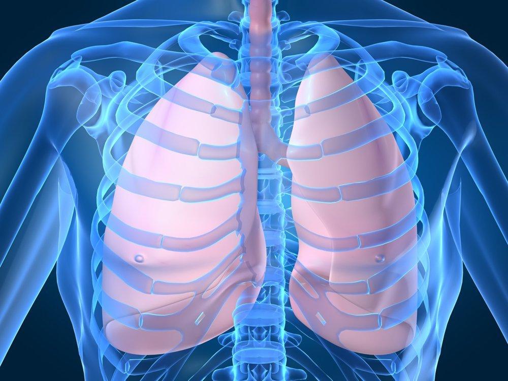Лимфоузлы средостения: где находятся, причины увеличения, тревожные симптомы, лечение