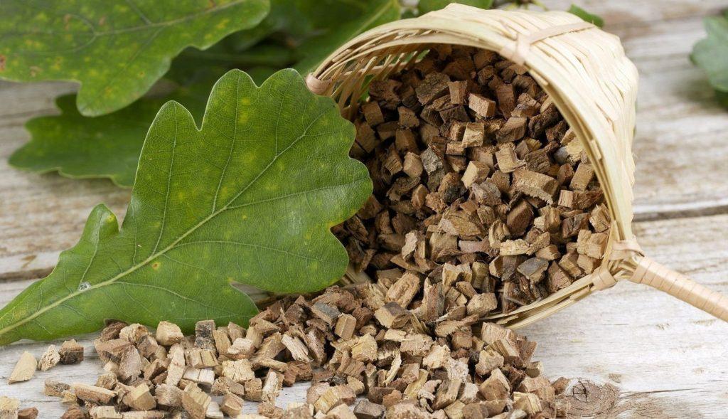 Полезные свойства коры дуба при аденоидах у детей