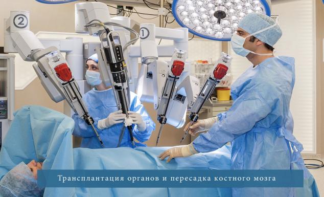 костный мозг трансплонтация