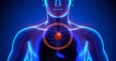 Стимуляция вилочковой железы